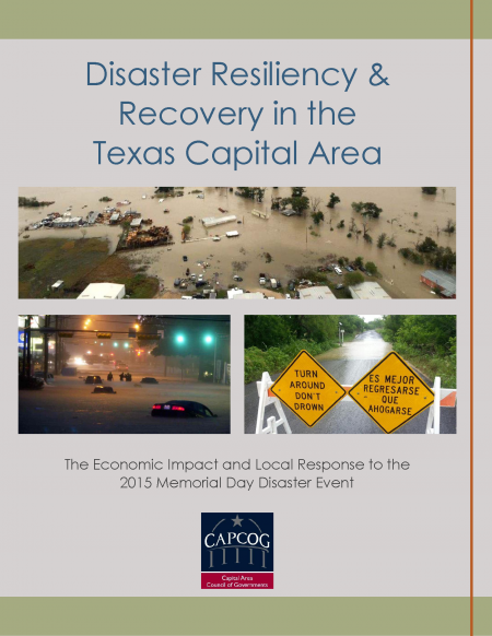 Click to download Disaster Resiliency & Recovery Report